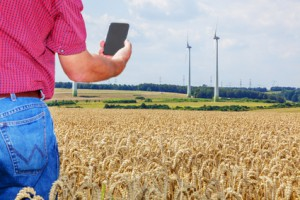 Farmer with smartphone in cornfield